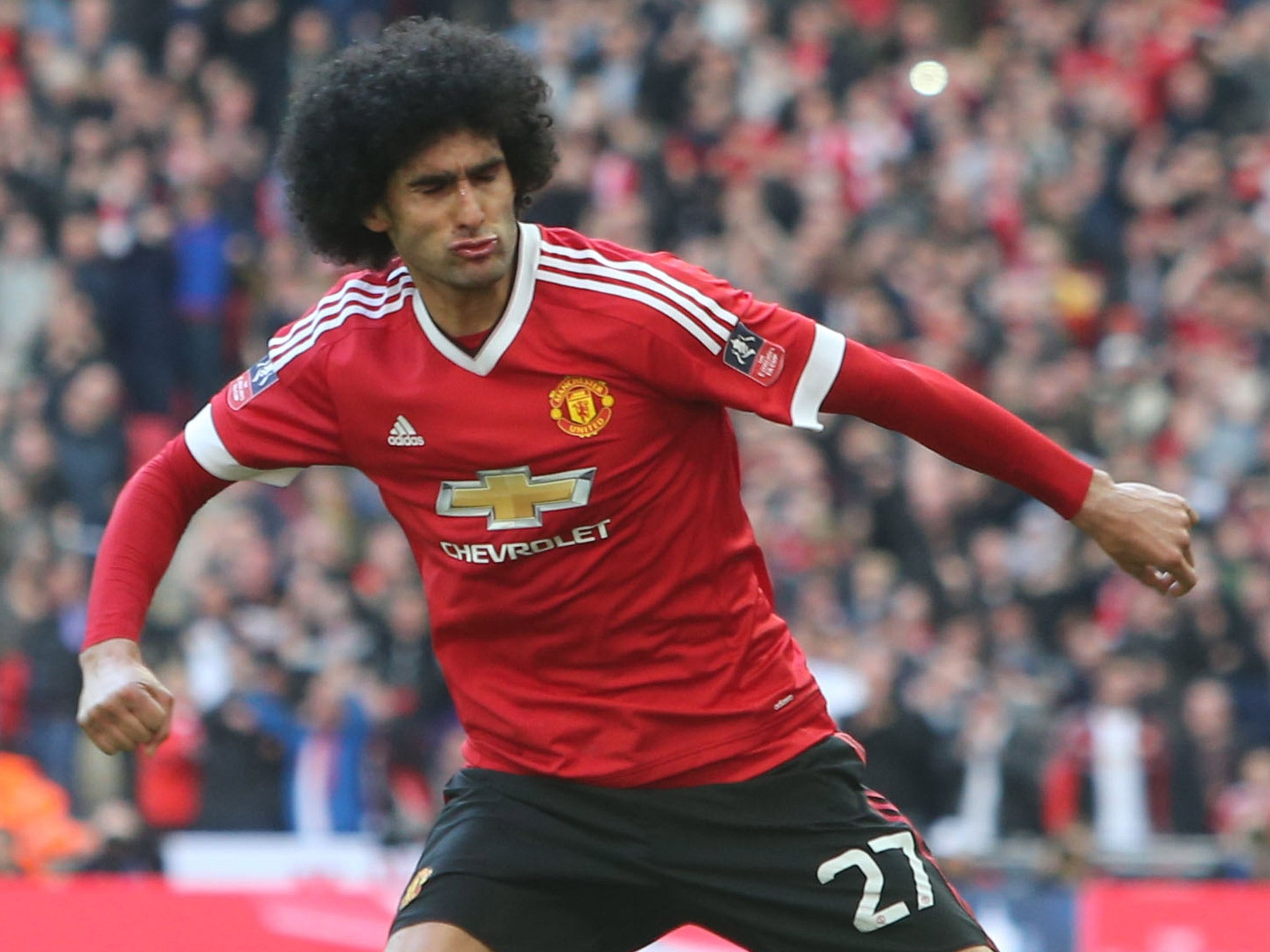 fellaini - photo #32