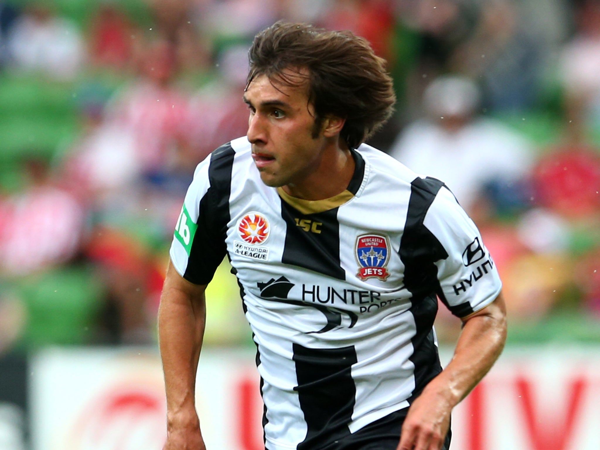 Image result for Bernardo Ribeiro
