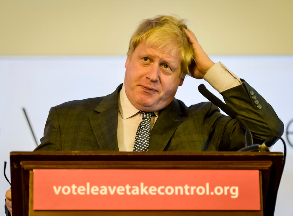 James Chapman claimed Boris Johnson should be in prison over mistruths during the Brexit campaign