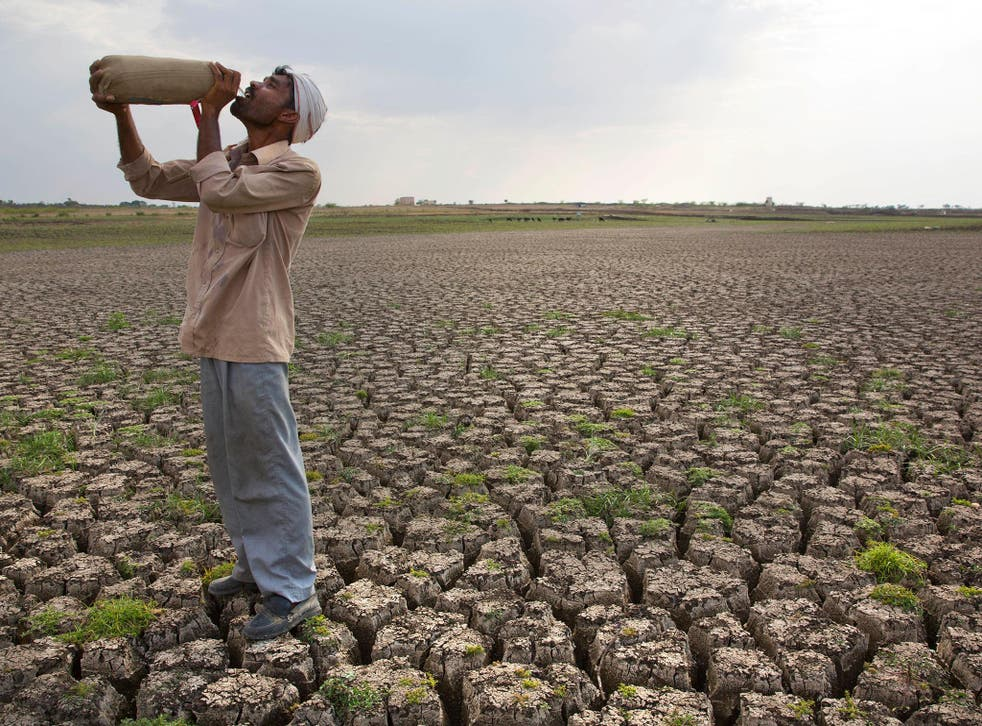 A shepherd drinks water on the dry bed of a reservoir that once supplied water to Latur in Marathwada
