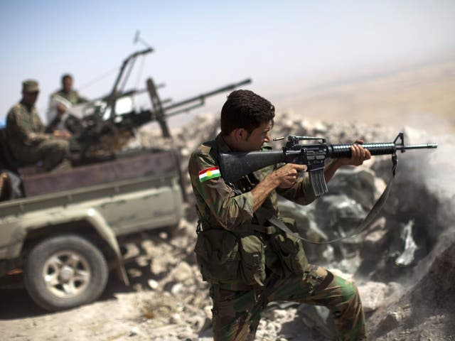 The Iraqi Kurdish Peshmerga, many of whom are veterans, have been spearheading the defence against Isis militants