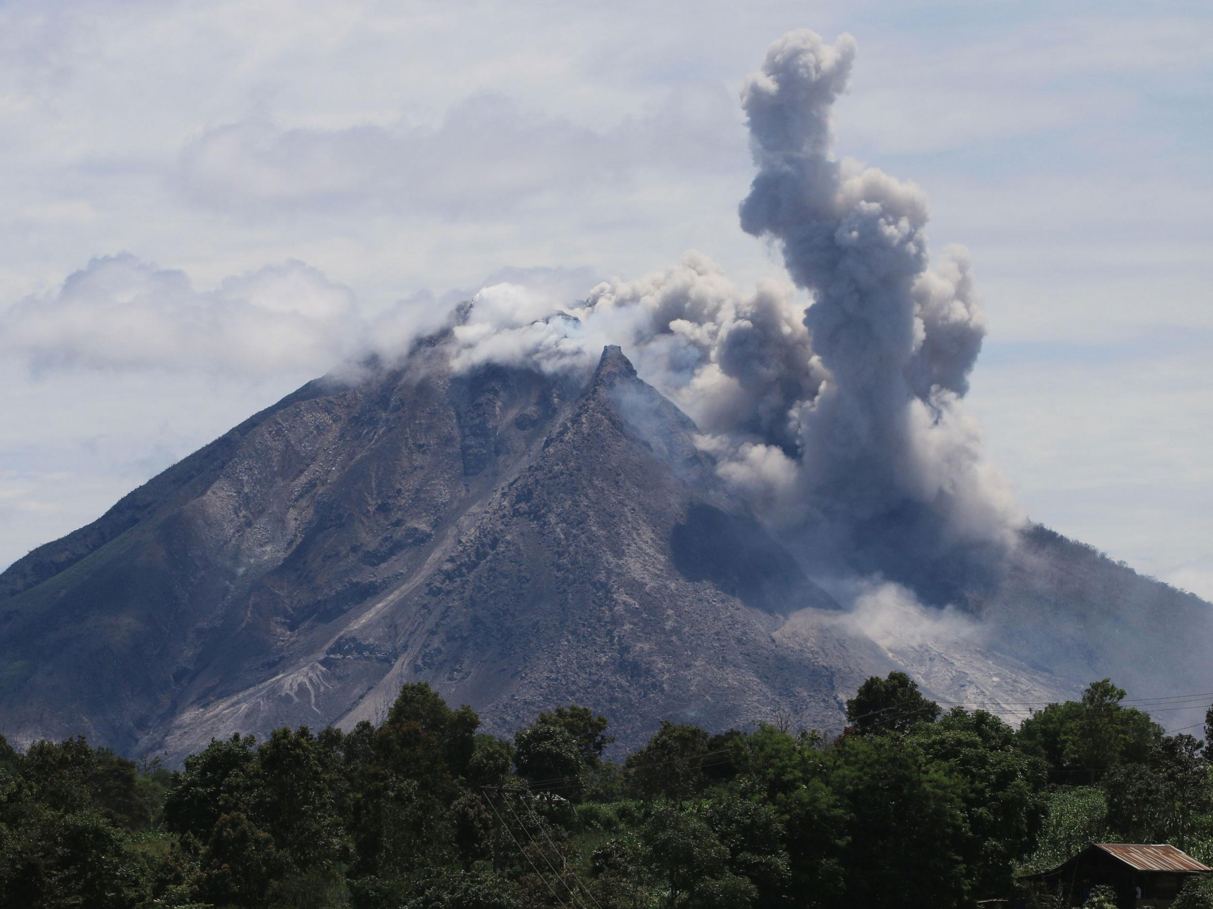 Is there any other advantages of staying on an island after a volcano eruption?