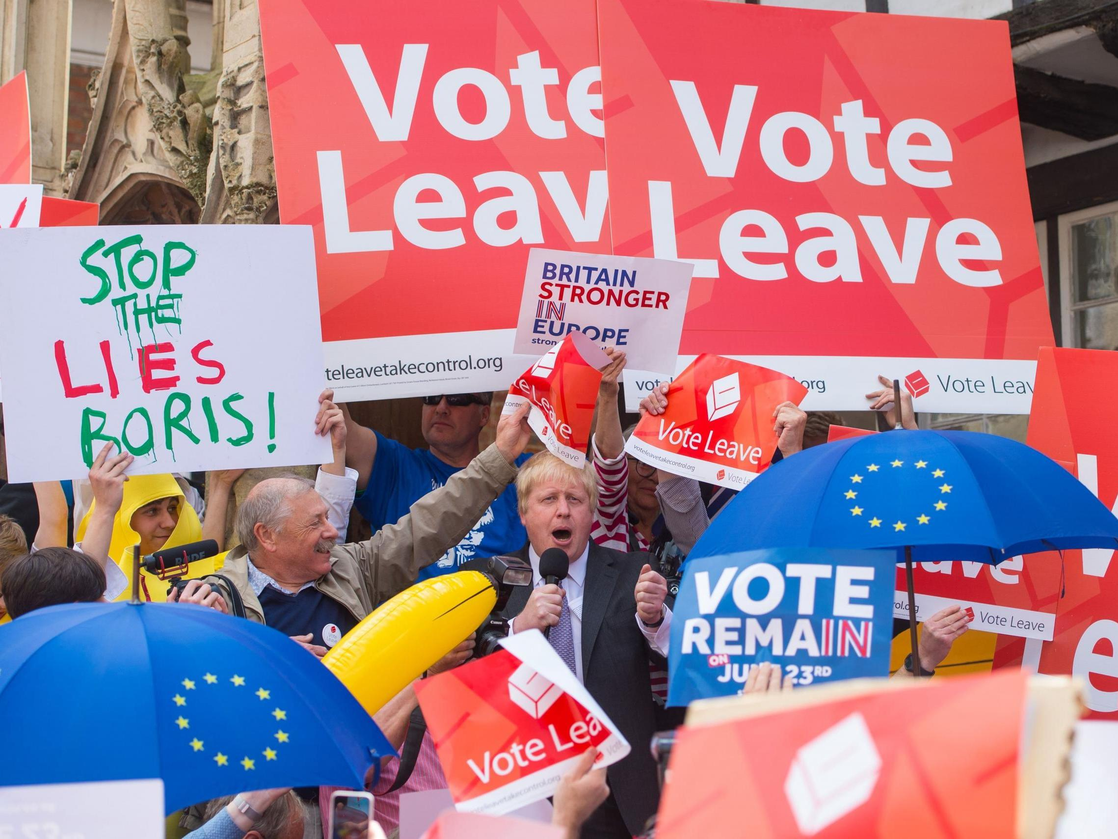Leave 'very likely' won Brexit referendum due to illegal overspending, Oxford professor to tell High Court