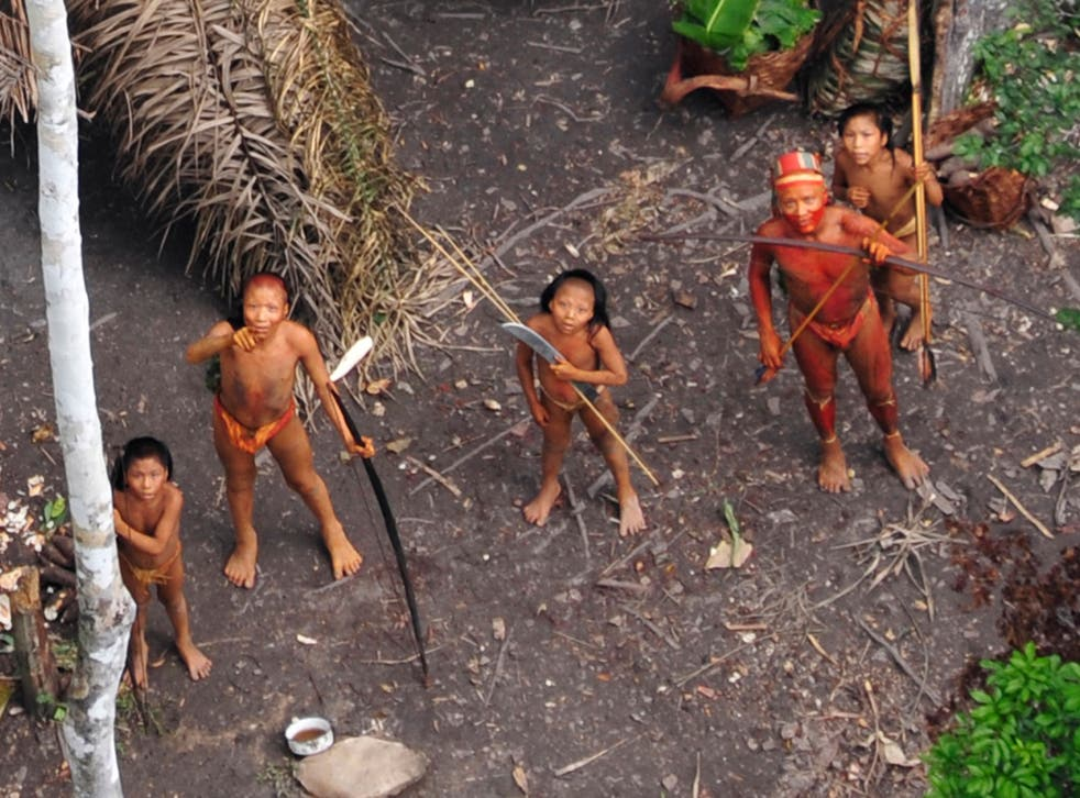 Uncontacted Brazilian people, photographed from the air