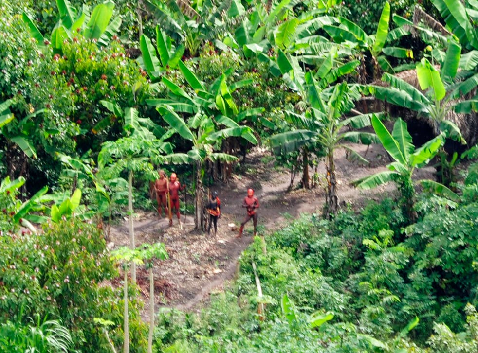 Uncontacted indigenous tribe, photographed from the air
