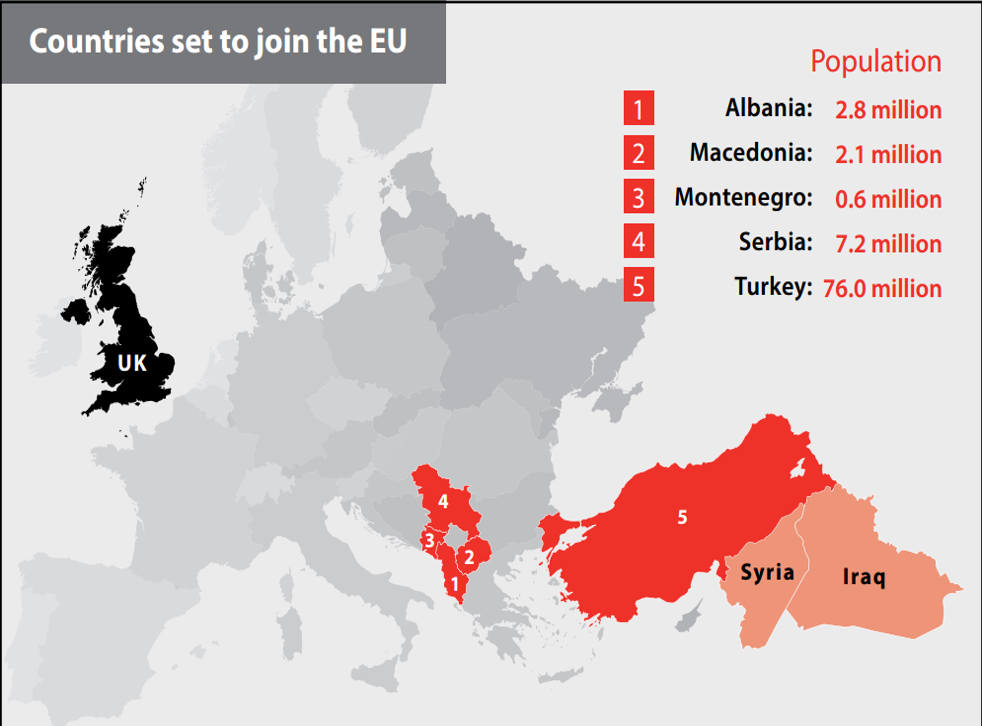 An image from official Vote Leave material