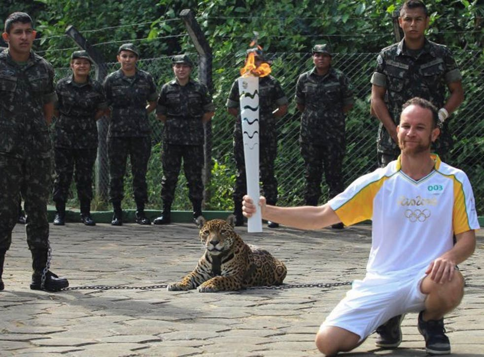 Brazilian physiotherapist Igor Simoes Andrade poses for picture next to jaguar Juma as he takes part in the Olympic Flame torch relay in Manaus, Brazil, June 20, 2016
