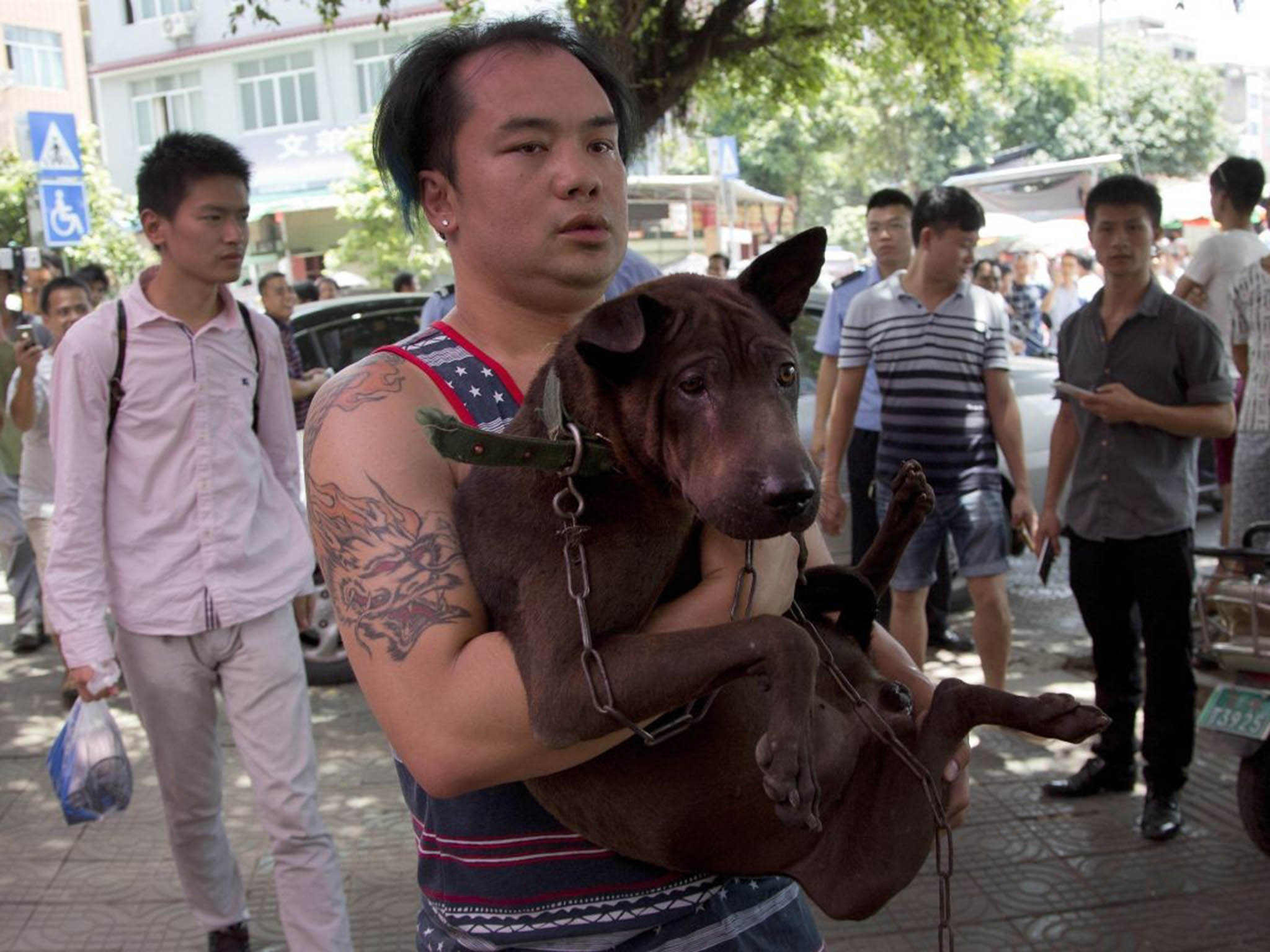 Yulin Dog Meat Festival 2016: Animal activists save caged dogs from slaughter