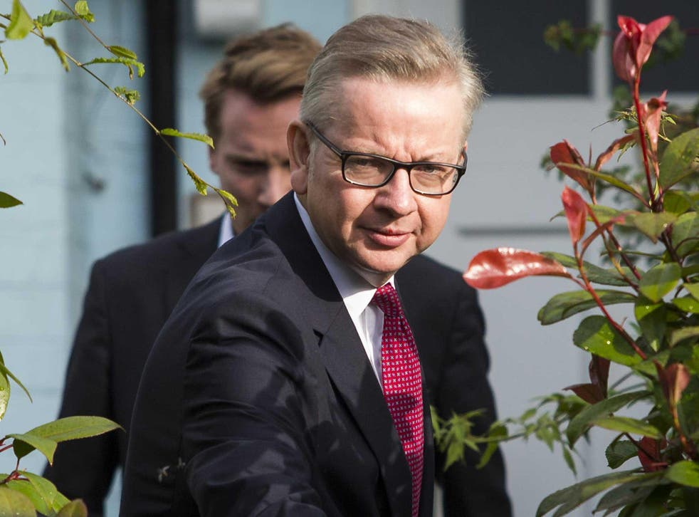 Michael Gove, seen in his garden, believes Brexit can be good for the environment and the fight against climate change