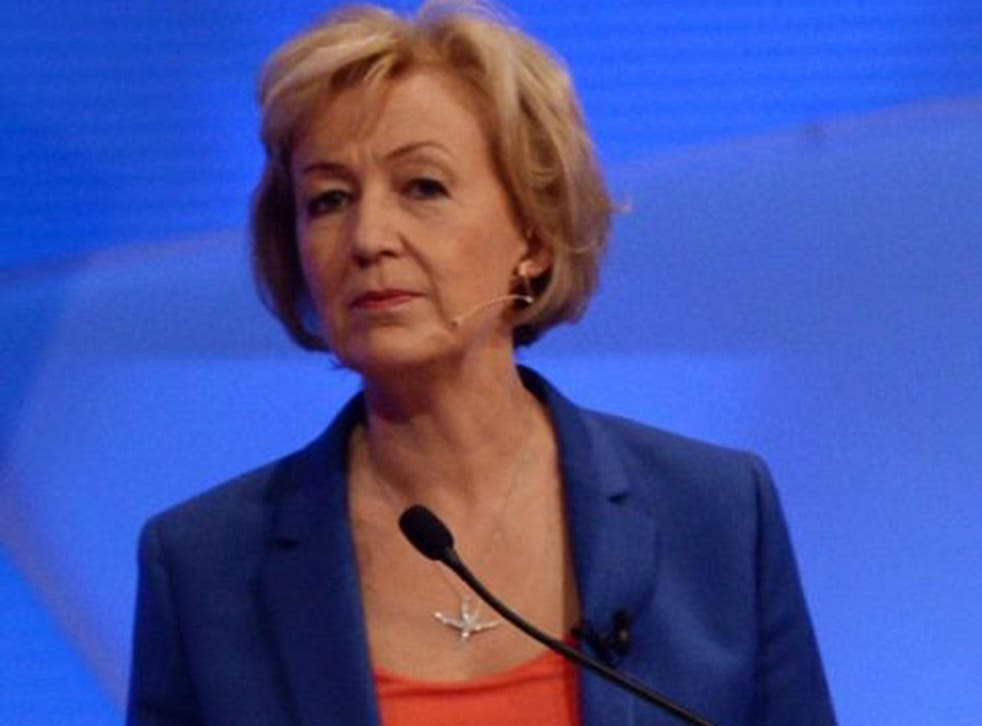 Energy Minister Andrea Leadsom is odds-on to become Home Secretary Theresa May's rival in the Conservative leadership race, as MPs continue to declare their support