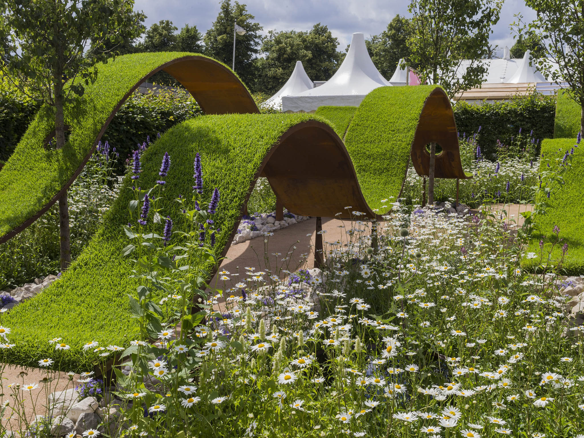 Roses In Garden: Hampton Court Palace Flower Show 2016: Which Gardens To