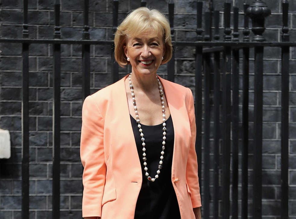 Environment Secretary Andrea Leadsom must obey court rulings 'as any other litigant', the judge said