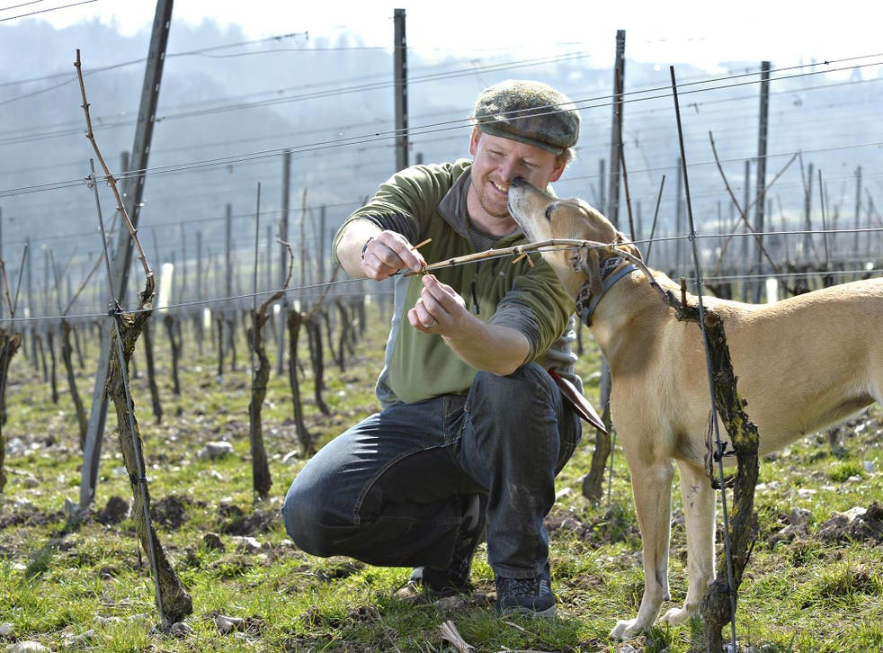 Dermot Sugrue, pictured with his dog Nooles is the winemaker for the Wiston Estate Winery, among others (Rob Scott)
