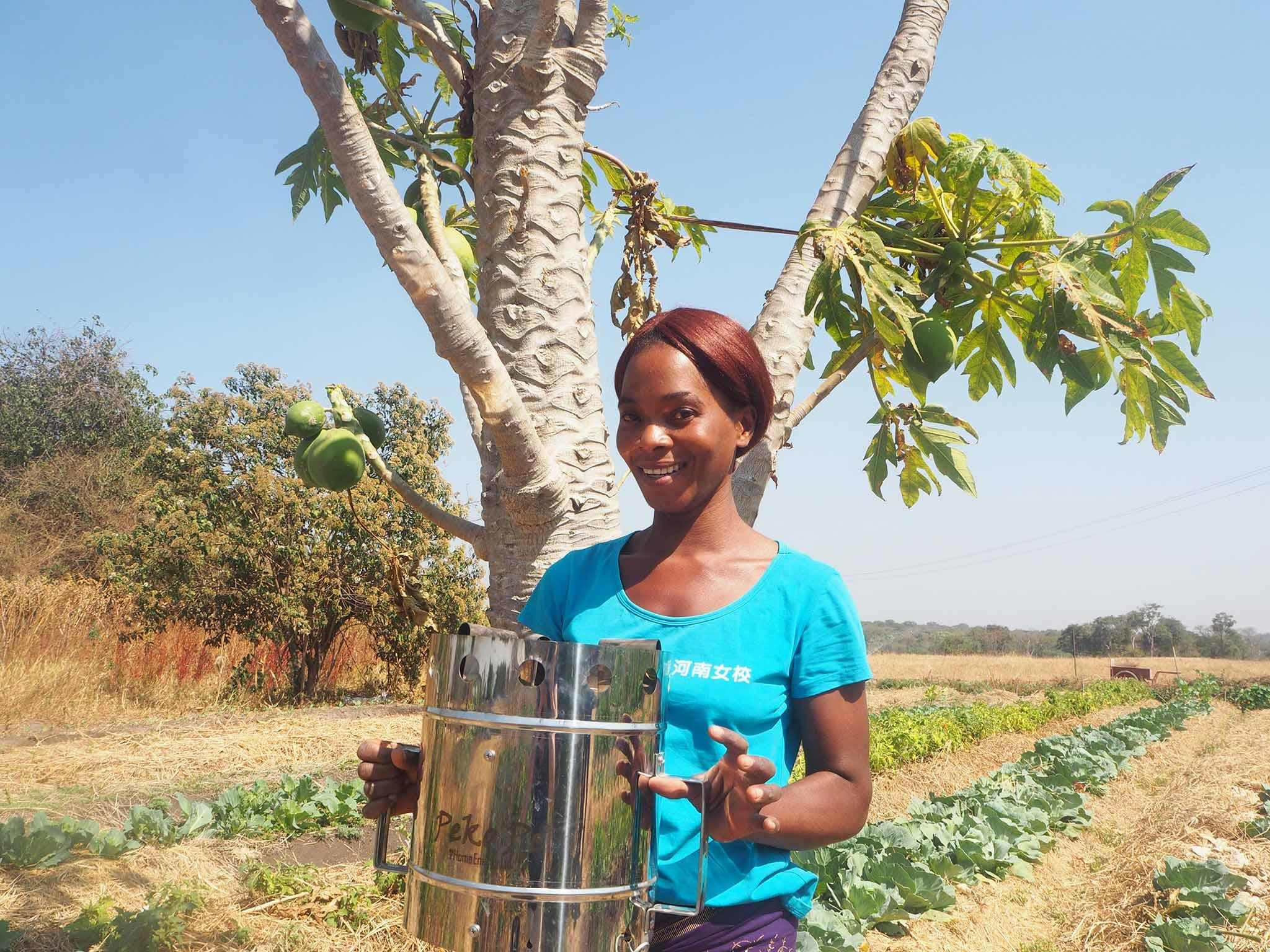New project aims to prevent deforestation in Zambia by turning women into entrepreneurs
