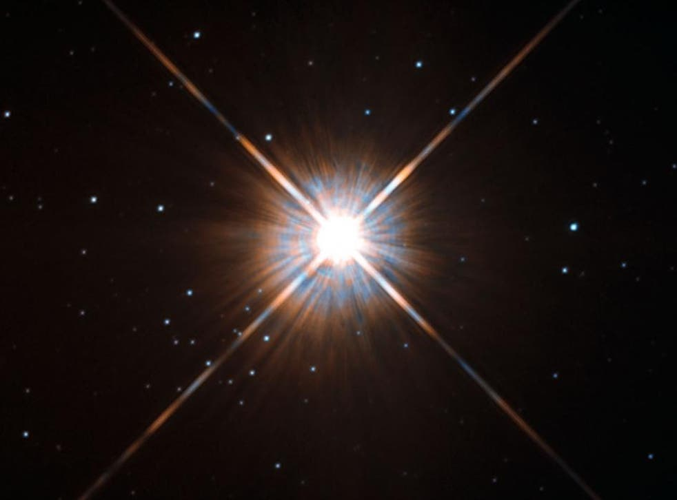 An image from Hubble of Proxima Centauri, which is our nearest neighbour and could be the home of another Earth