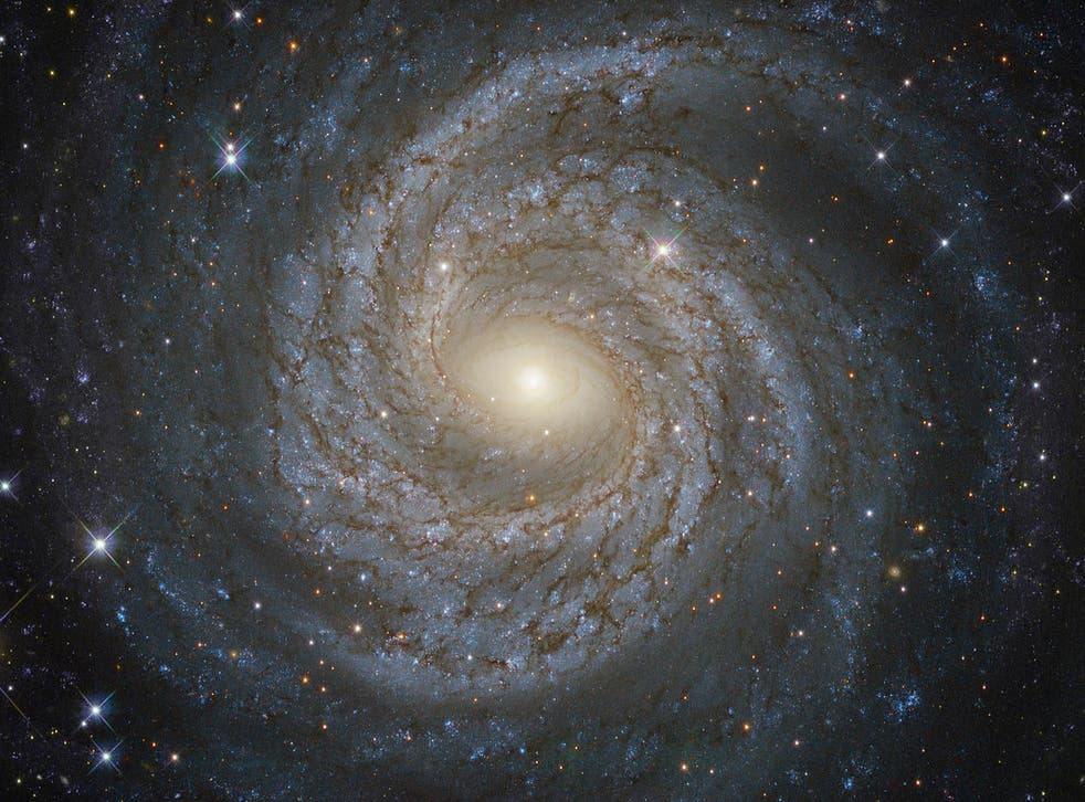 The discovery is an unprecedented look at the distant universe