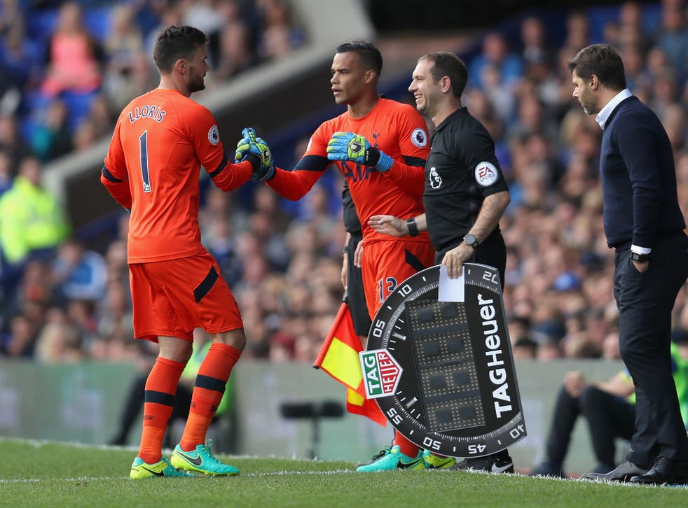 Hugo Lloris will miss the next four weeks with injury