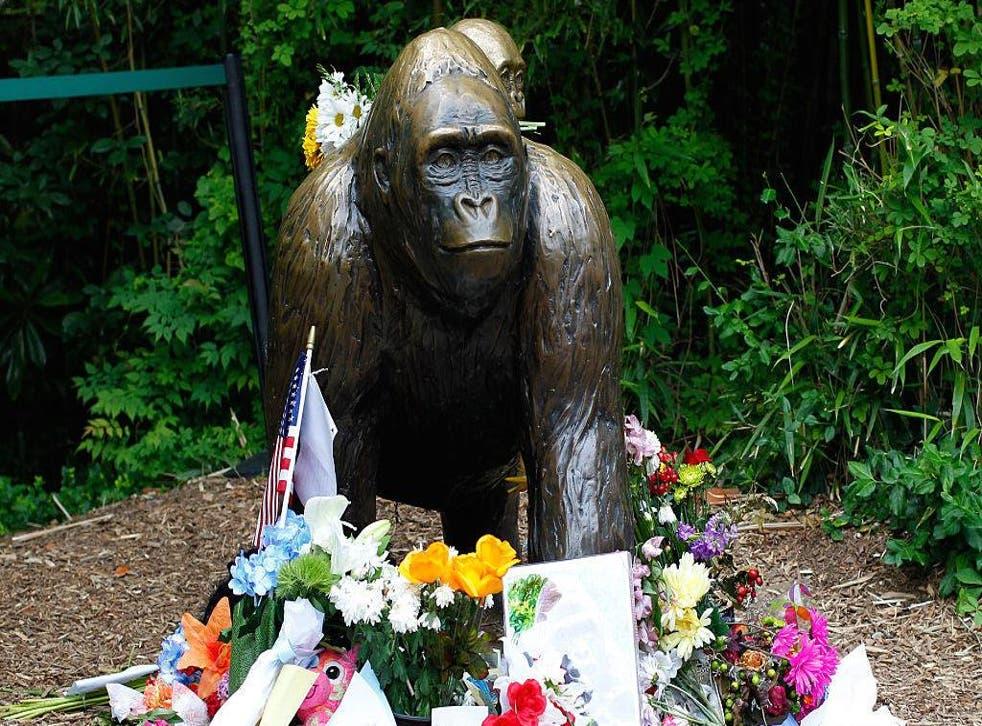 A Harambe memorial is shown outside the Cincinnati zoo.