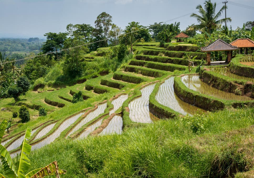 How do I get the best exchange rate in Bali? | The Independent
