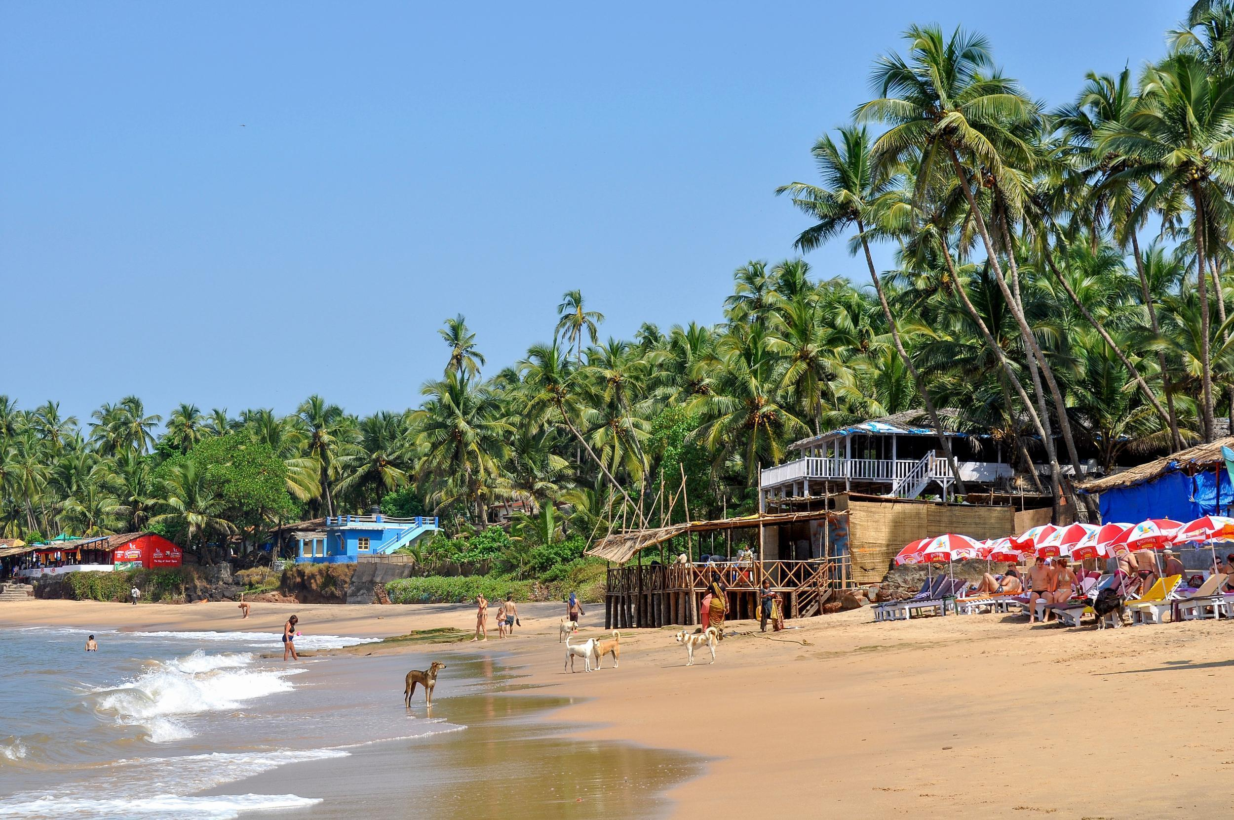 How much to fly to Goa 87