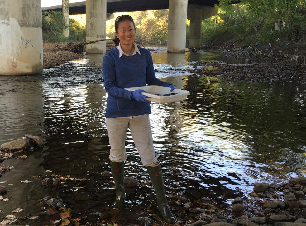 Sylvia Lee samples Gwynns Falls at Carroll Park, Baltimore, where water is polluted with amphetamines, also known as speed