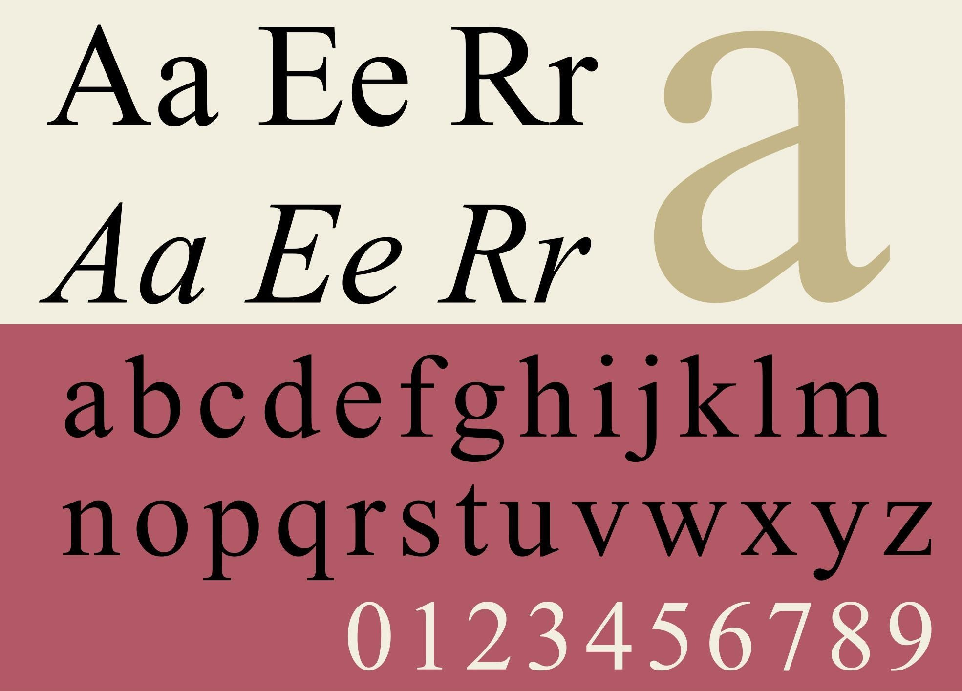 Times New Roman Is The Most Trustworthy Font Study Finds