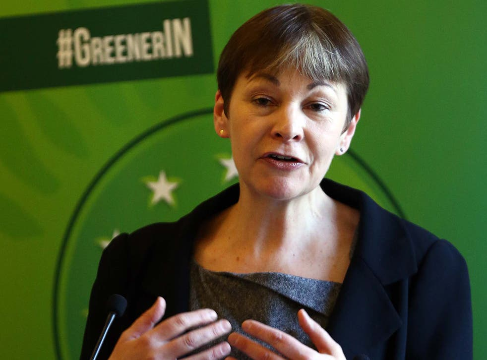 'We the people should continue to have our say', according to Green Party leader Caroline Lucas