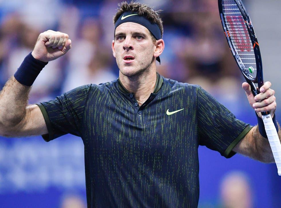 Juan Martin del Potro celebrates his victory over Steve Johnson in the US Open second round