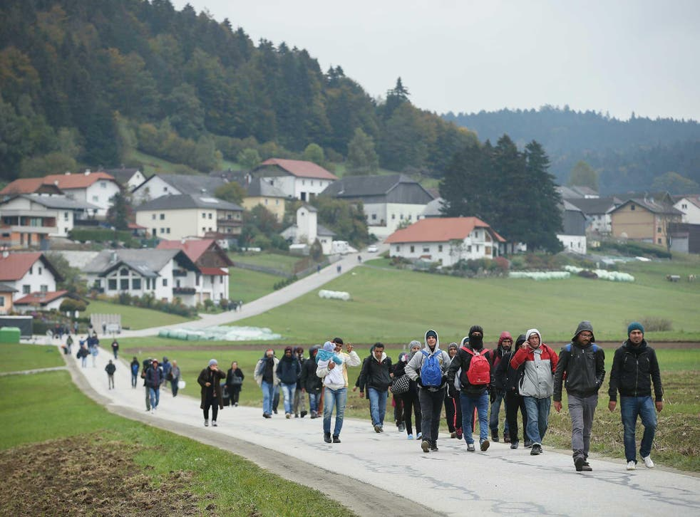 Refugees who had arrived via buses chartered by Austrian authorities walk towards the border to Germany near Mistlberg, Austria
