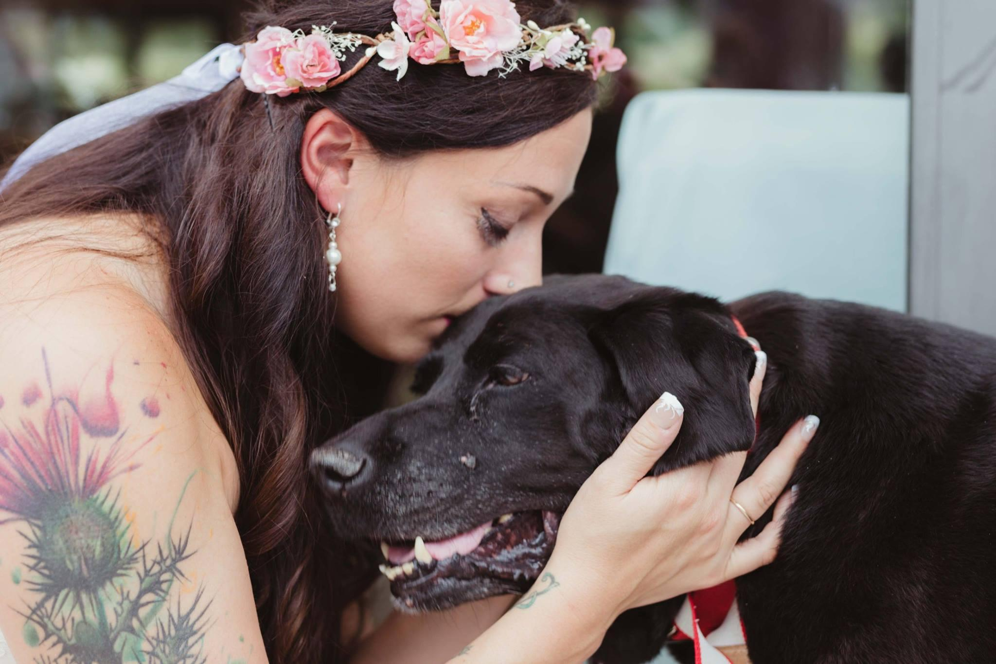 This dog lived just long enough to see his owner get married