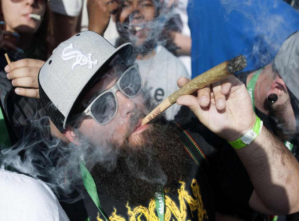 Move over Amsterdam: as more states move to legalise marijuana, the US is becoming a hotbed of stoner holidays
