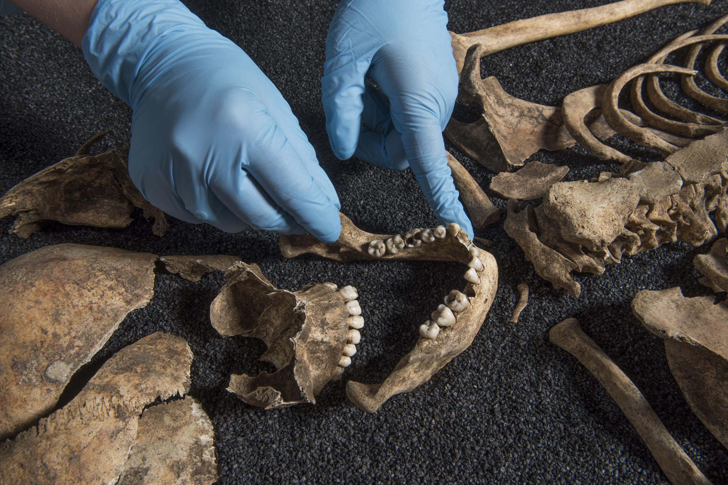 'Phenomenal' ancient Chinese skeleton discovery in London graveyard casts new light on Roman society