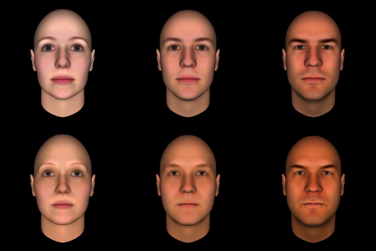 Features of male perception