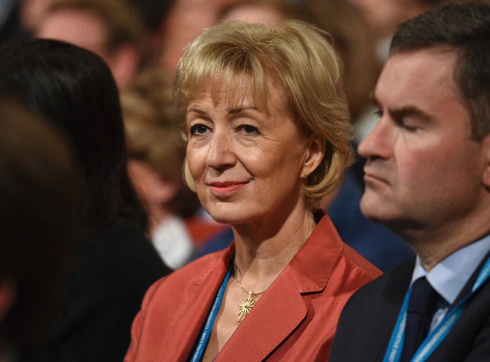 Ms Leadsom faced social media backlash after suggesting young Britons take up fruit-picking jobs