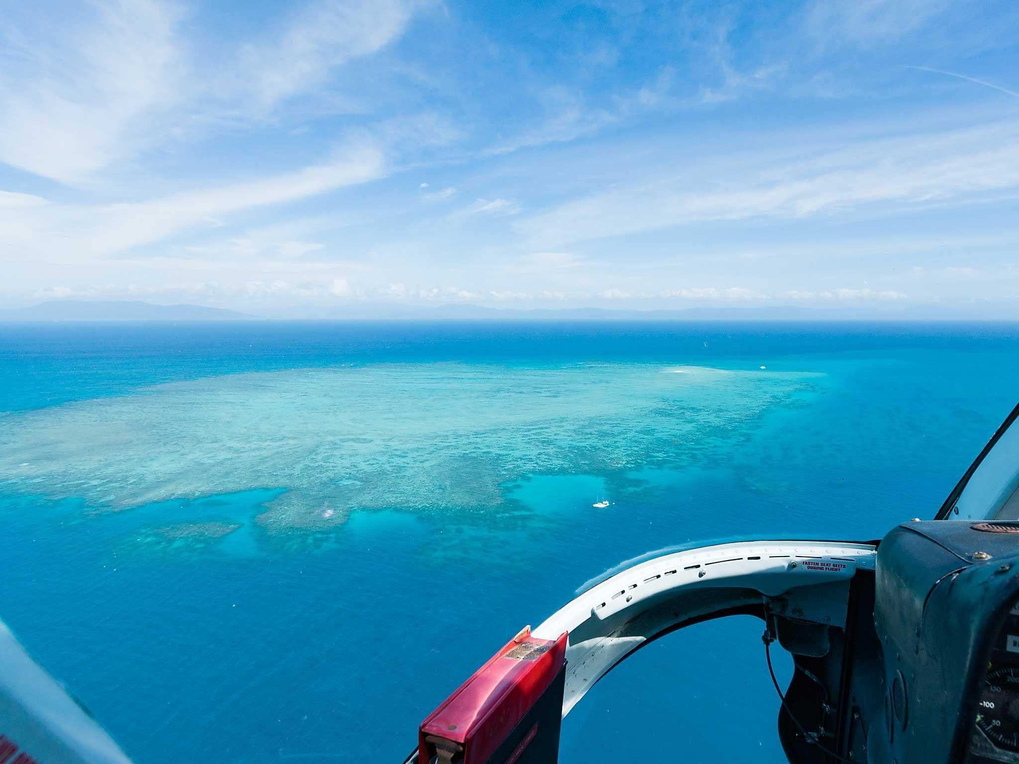 More than 90 percent of world's coral reefs will die by 2050