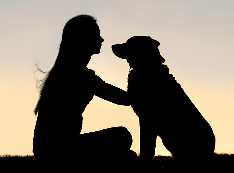 It takes around 200 hours of training for abused women to work effectively with their protection dogs