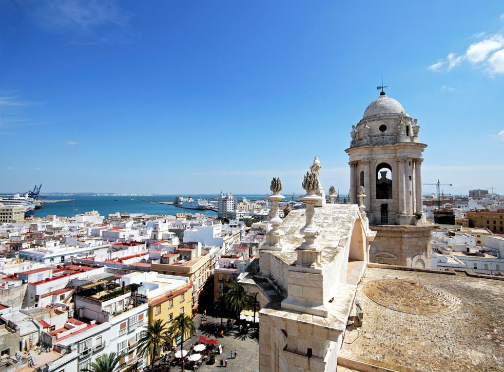 Cadiz plans to deal humanely with its pigeon problem