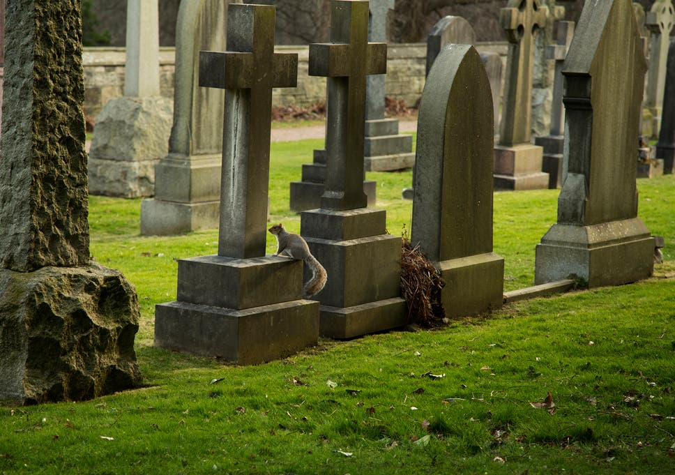 Sweden Opens First Atheist Cemetery To Cater To Growing Non