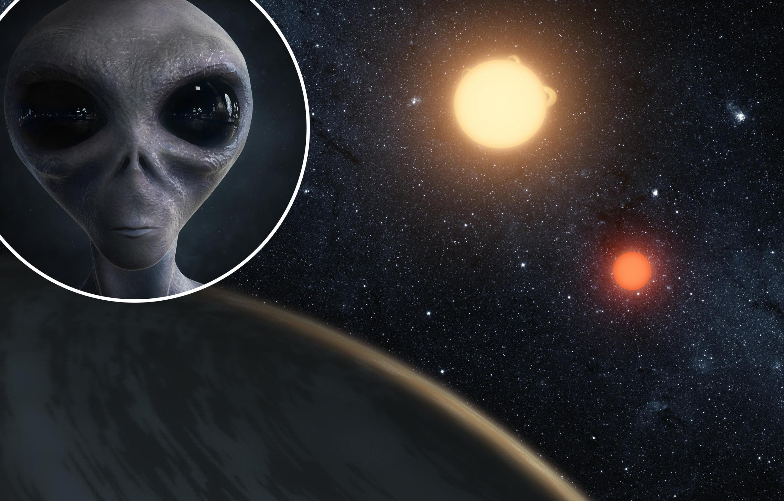 a study of evidence that suggests intelligent alien life Spacecom is where humanity's 'project ozma' begins search for alien life astronauts representing countries from around the world show you what life is like.
