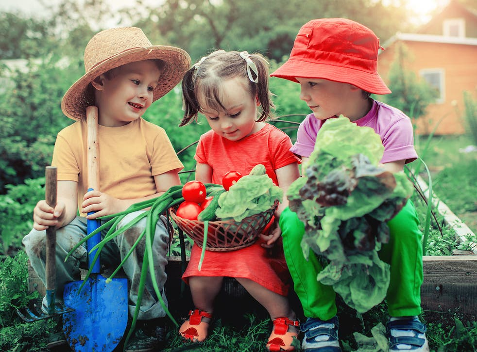 Children who are raised as vegetarians grow and develop at the same rate as meat-eaters