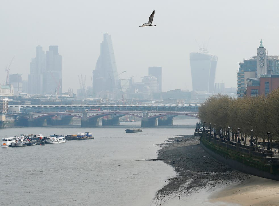 A seagull flies above the smog-filled skyline of the City of London