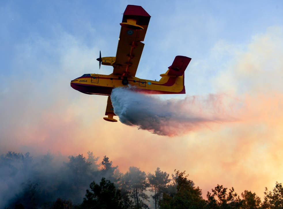 Eight countries, including Russia, sent firefighter planes to help combat the wildfires