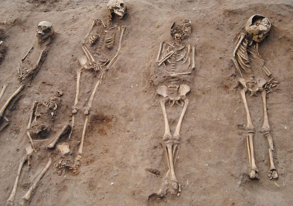 Plague Pit With Skeletons Of 48 Black Death Victims Including 21