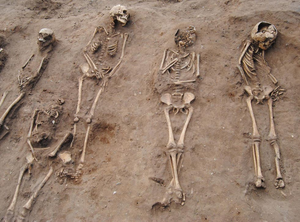 The mass burial, where more than half of the skeletons are children, was uncovered at the site of a 14th century monastery hospital