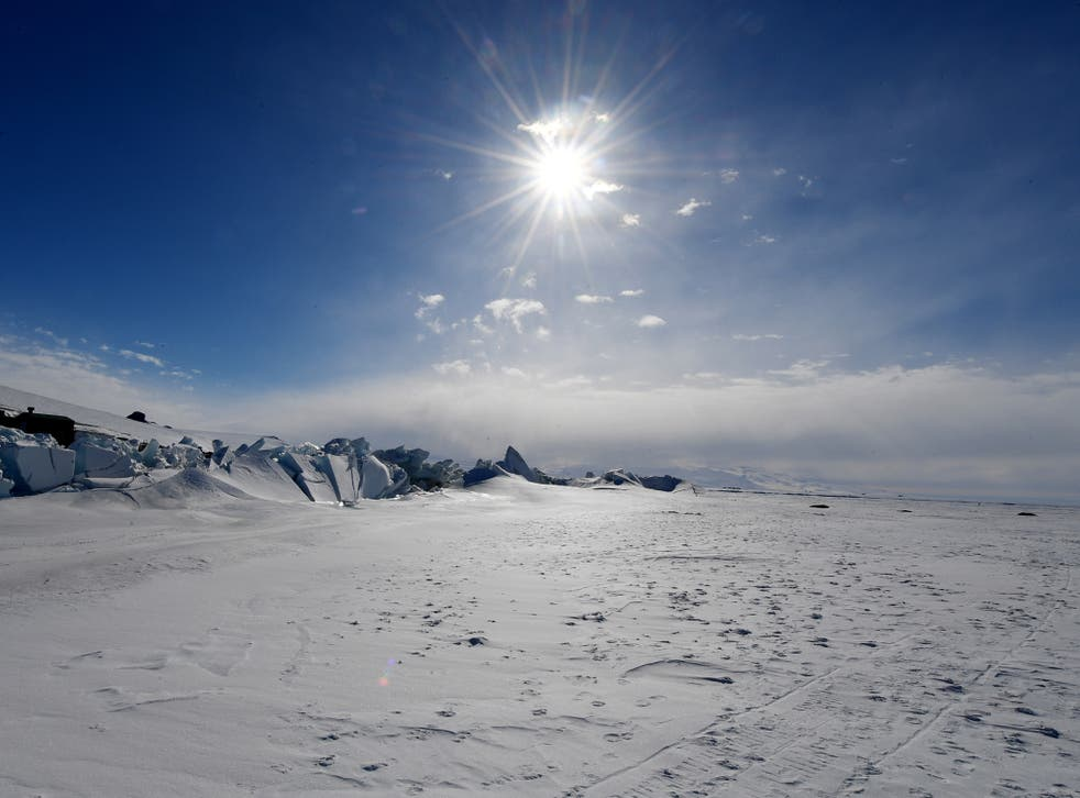 The Antarctic Peninsula is among the most rapidly warming areas of the planet