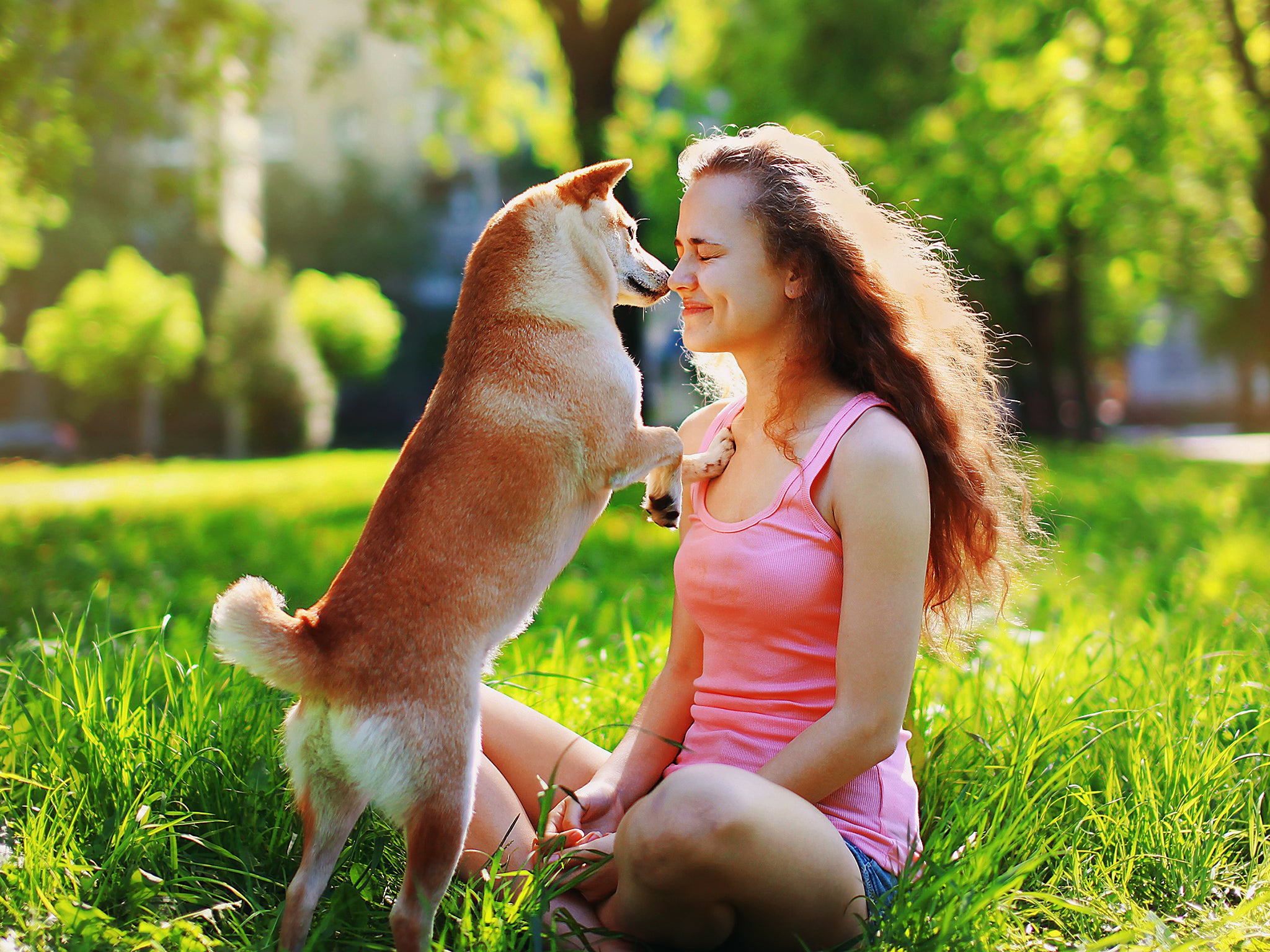 Why The Relationship Between Owners And Pets Is Always An