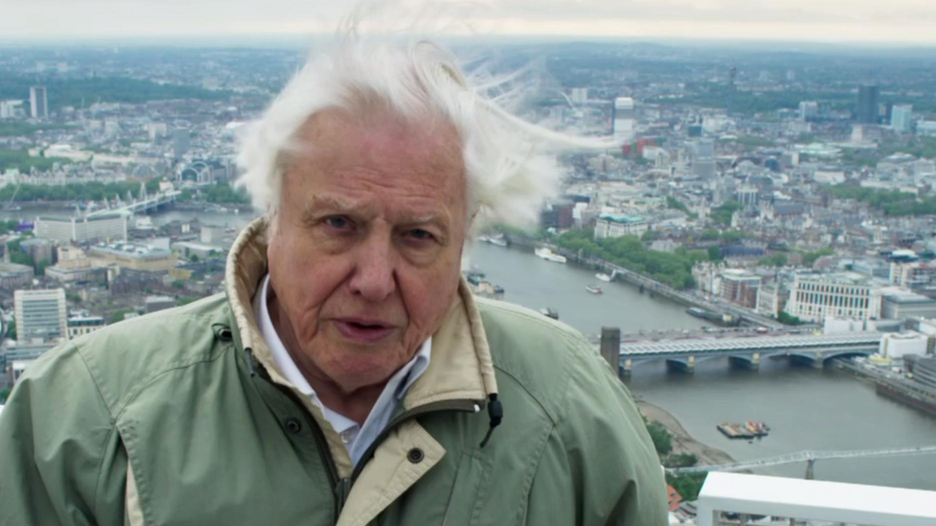 Planet Earth 2 Watch Sir David Attenborough 39 S Mic Drop