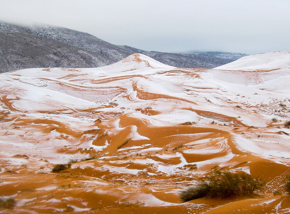 Snow on dunes near Ain Sefra, Algeria. Snow was last seen in Ain Sefra, known as 'The Gateway to the Desert,' on 18 February, 1979, when the snow storm lasted just half an hour