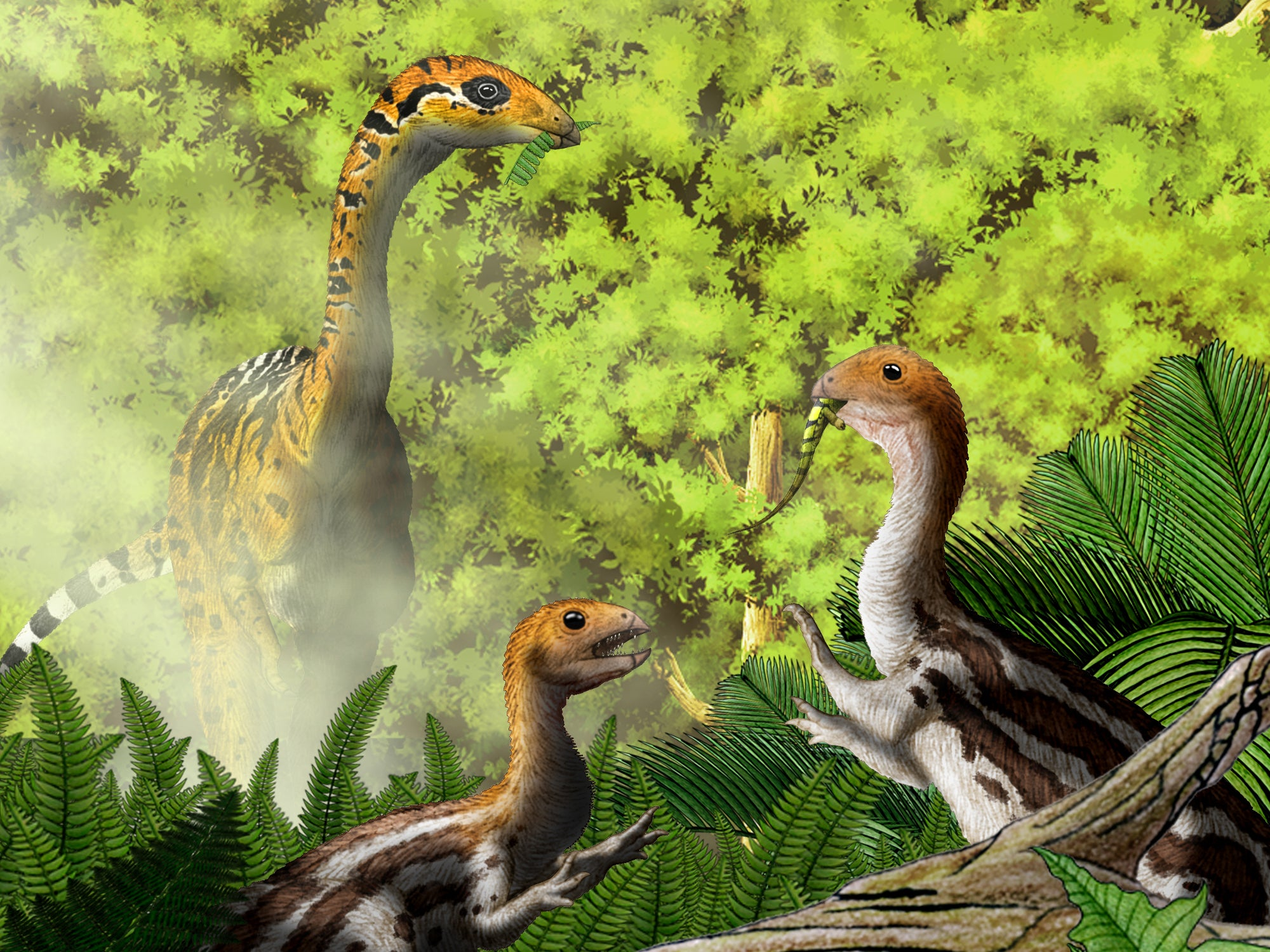 Meat Eating Dinosaur Grew Up To Become A Vegetarian Scientists Discover The Independent Independent