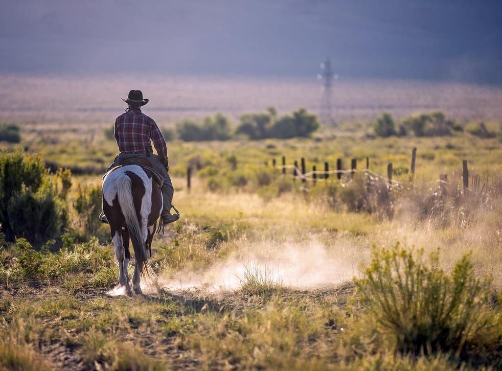 Harold Brown has gone from cattle farmer to devout vegan